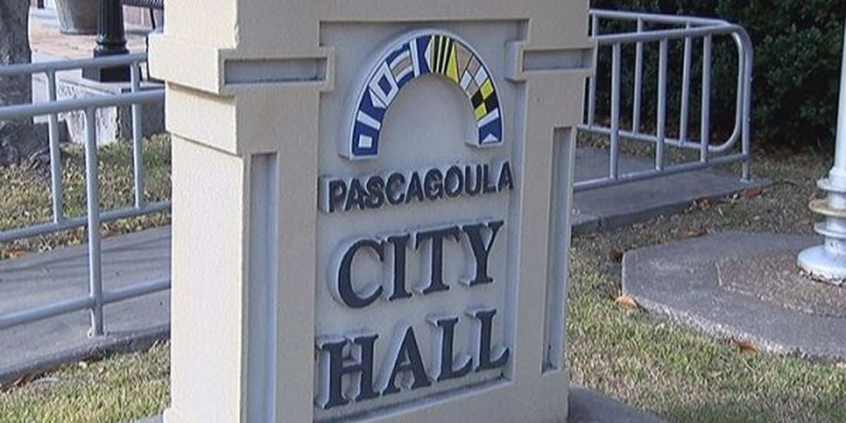Pascagoula voters could see a food tax on 2015 ballot