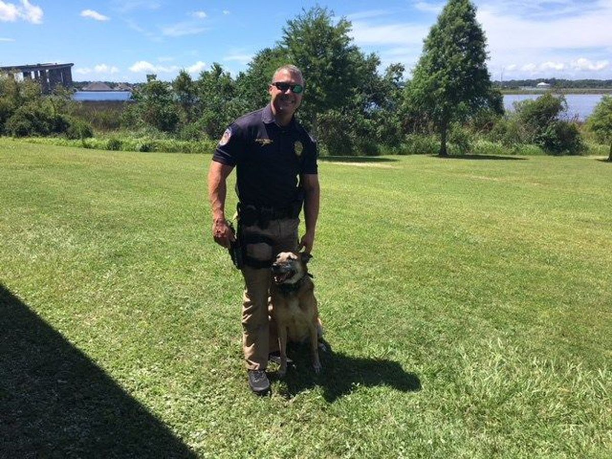 Moss Point PD announces death of K-9 officer Cora