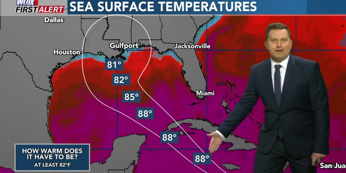 How recent cold fronts, water temps, and Gamma could impact Delta