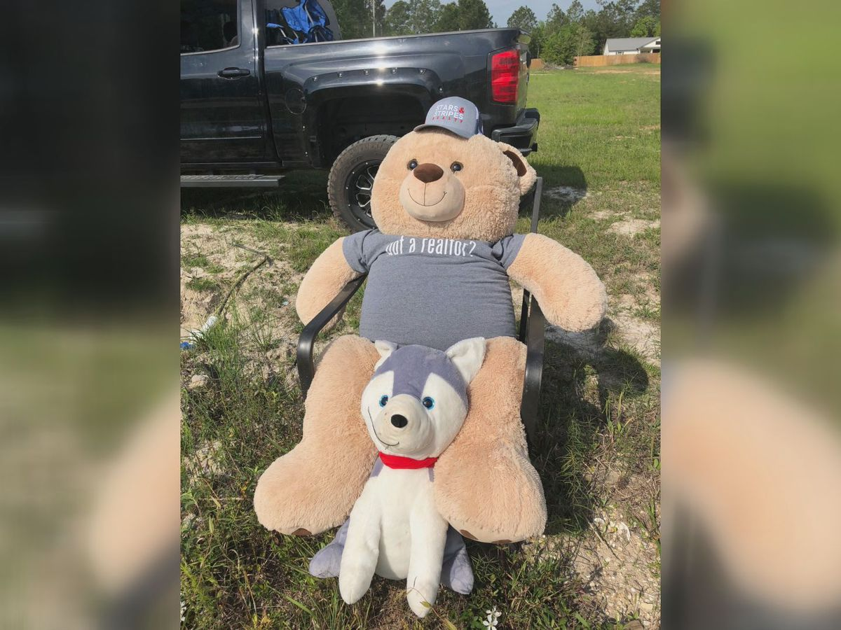 'Bring him back:' Long Beach family pleas for stuffed puppy's safe return