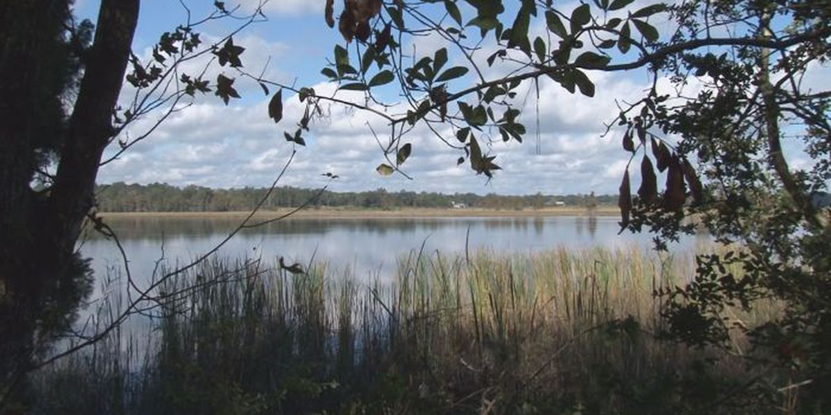 Pascagoula River considered a most endangered river