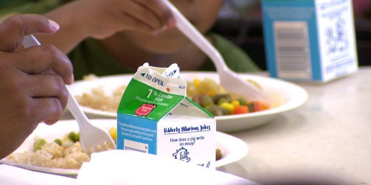 LIST: Summer feeding programs in South Mississippi