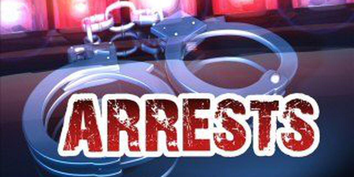 Bayside drug sweep nets 17 arrests in Hancock County