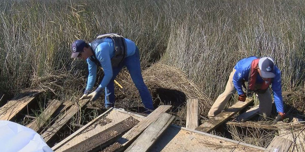 Renew Our Rivers cleanup draws smaller, but dedicated volunteer staff