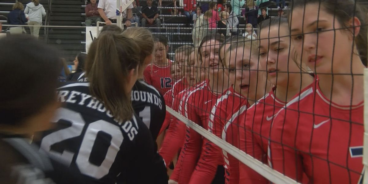 Four area volleyball squads punch tickets to Starkville for Final Fours
