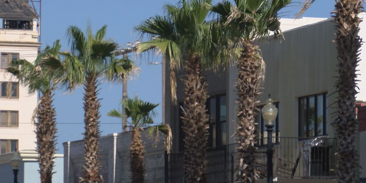 Plan to improve downtown Gulfport enters second phase