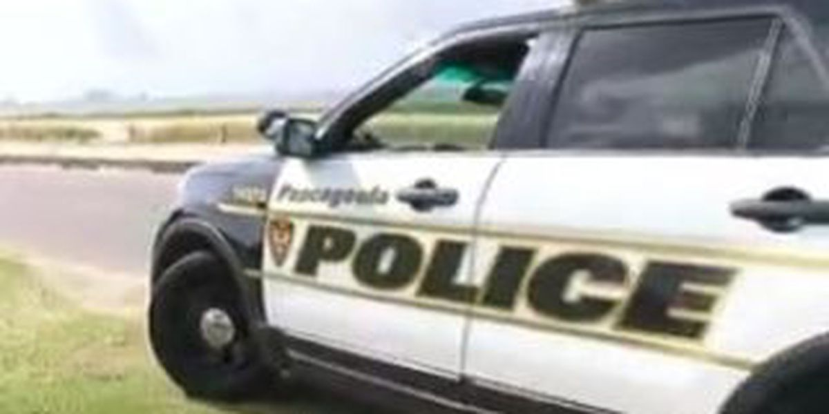 Pascagoula police department looking for new officers