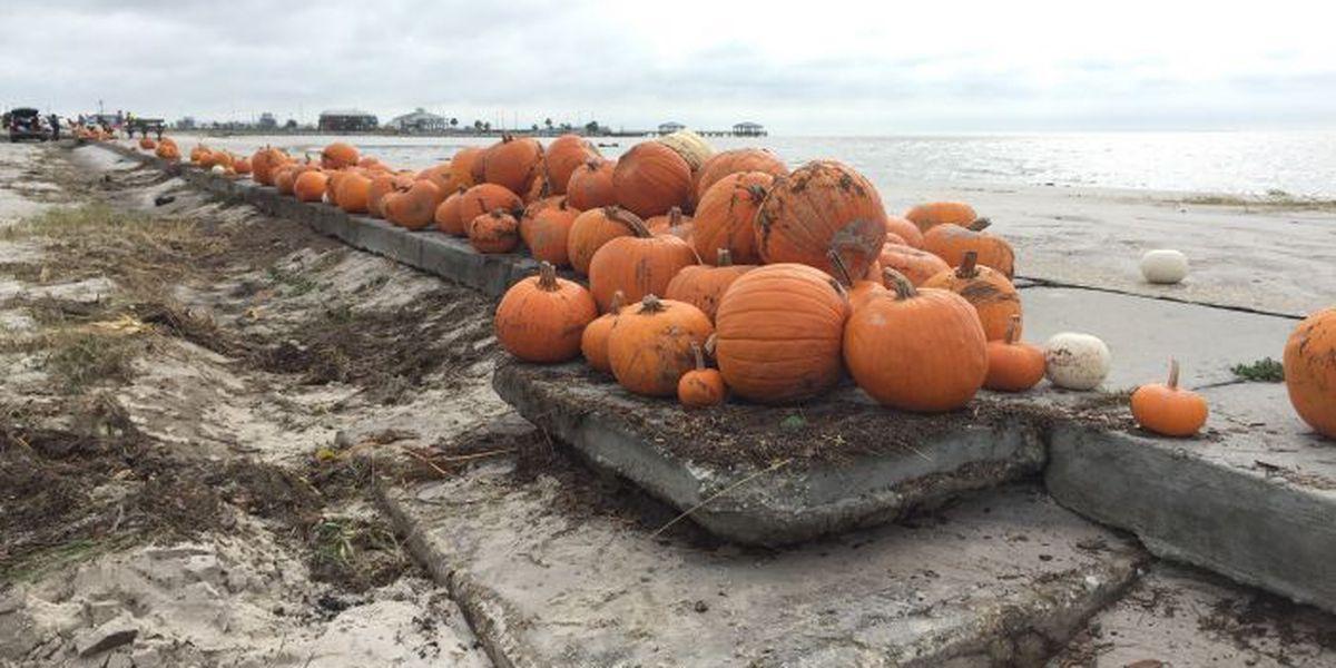 Storm survivor pumpkins litter beachfront in Pass Christian