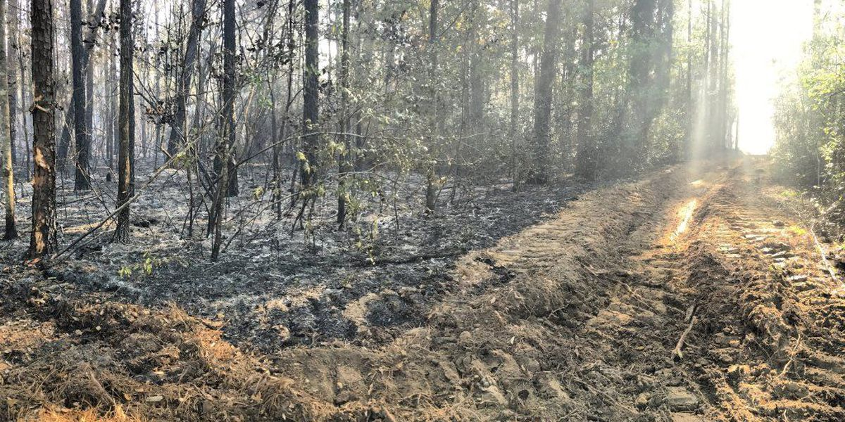 Gautier fire flare-up under control