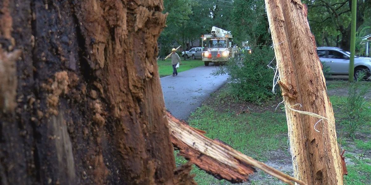 Storm topples power lines in Gulf Park Estates