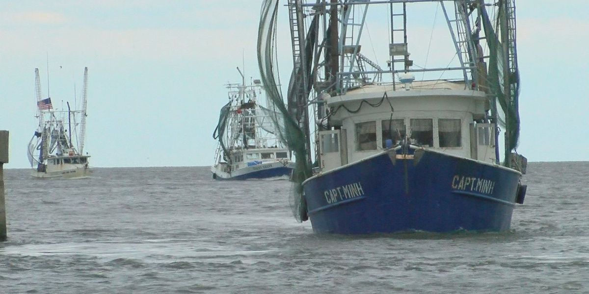 Pass Harbor returns to life after Hurricane Sally