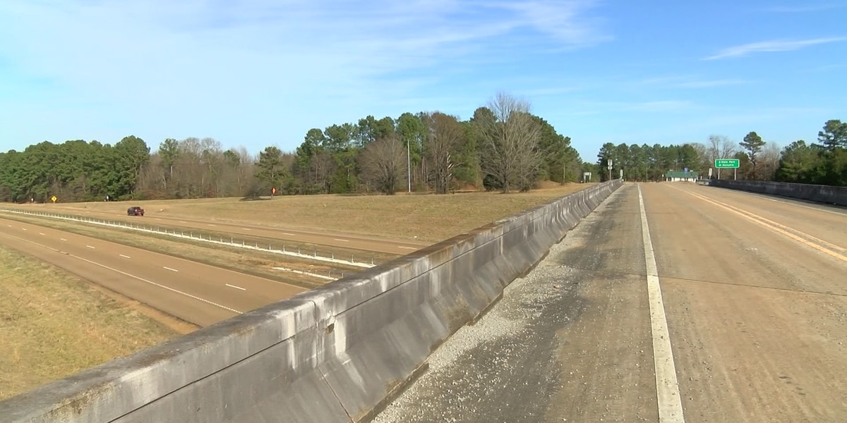 GRAPHIC: Deer thrown off interstate bridge hits semi-truck in Mississippi
