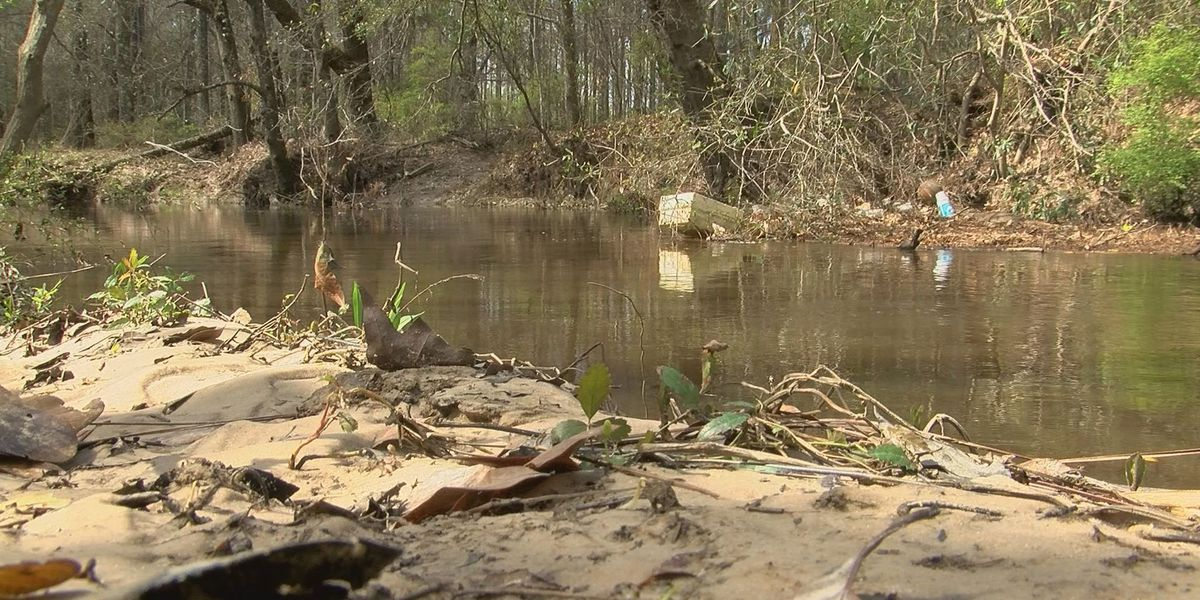 Councilwoman pushes for action to stop flooding from Turkey Creek