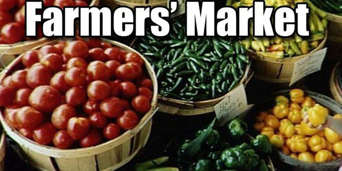 Gulfport Harbor Farmers\' Market returns to Jones Park