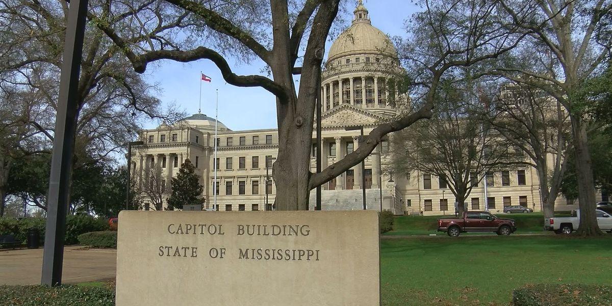 Gender wage gap bill introduced in MS State Legislature