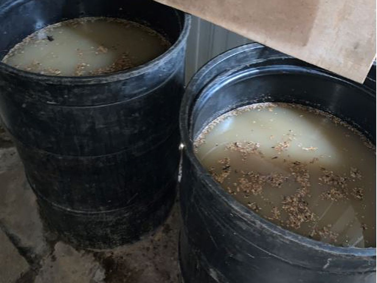 Moonshine operation discovered in Hancock County