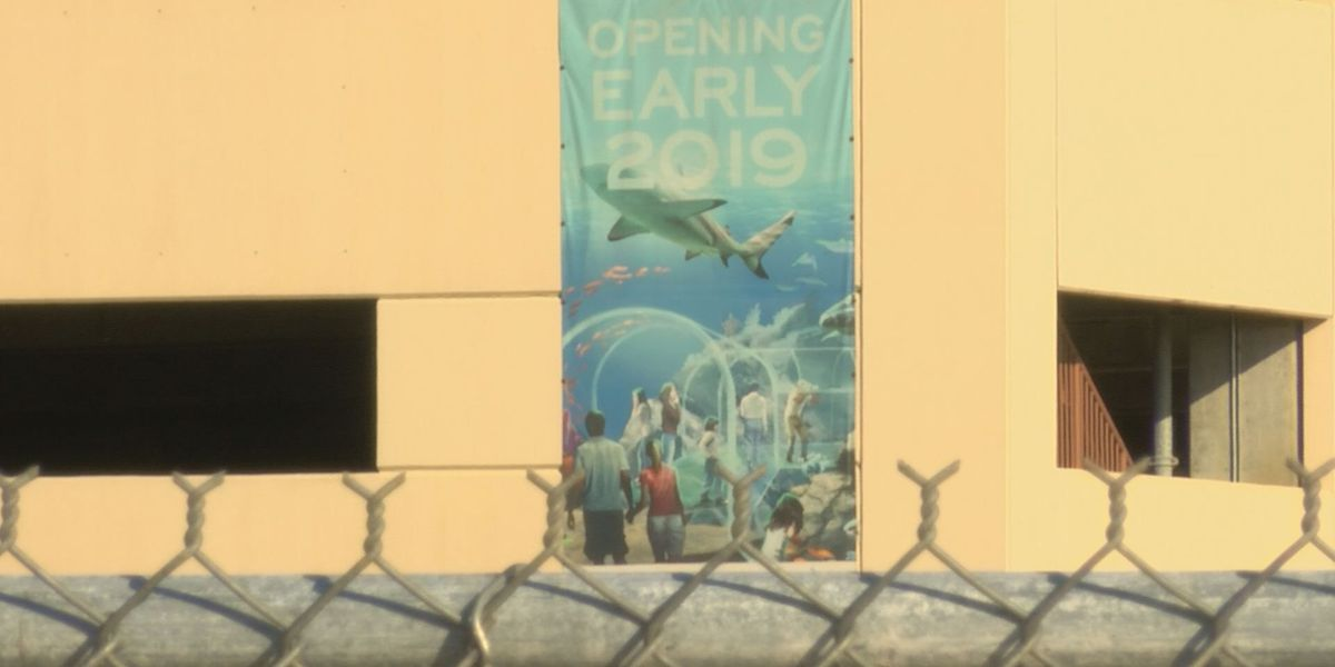 Mississippi Aquarium contract approved, a win for businesses