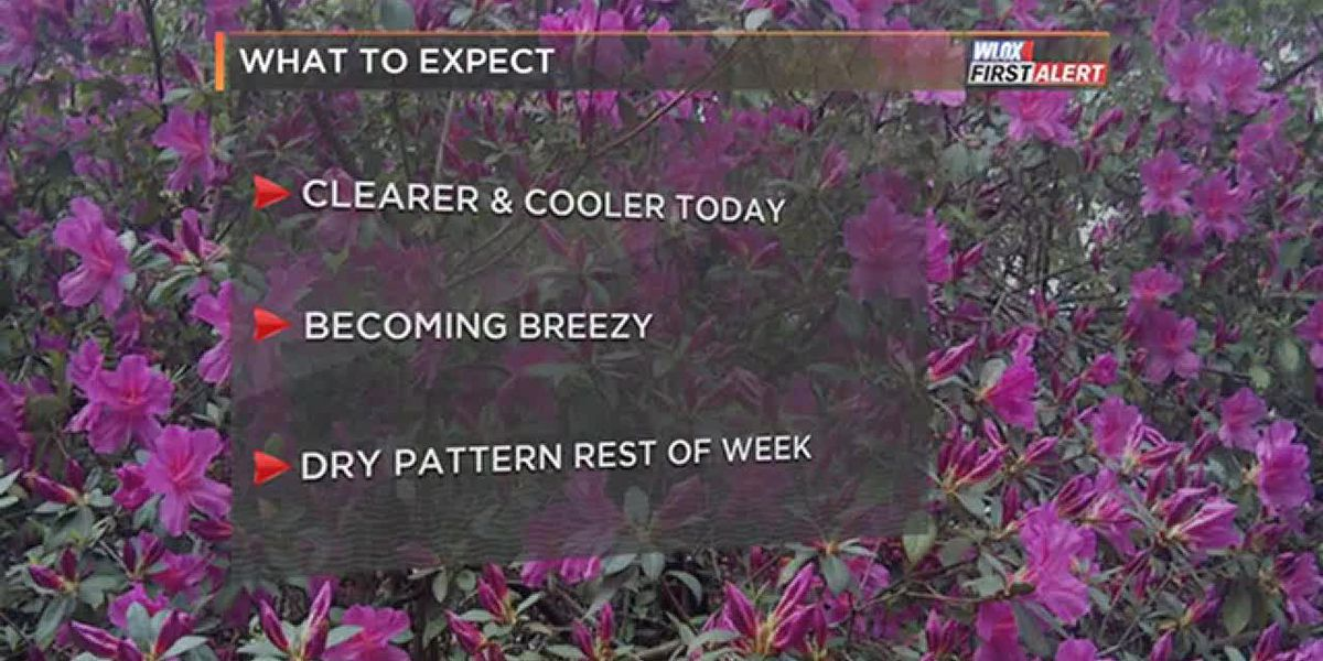 FORECAST VIDEO: 3-26-19 Cooler and clearer Tuesday. Drier this week.
