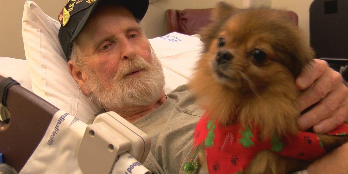 Pet therapy brings holiday joy to retirees at Biloxi VA