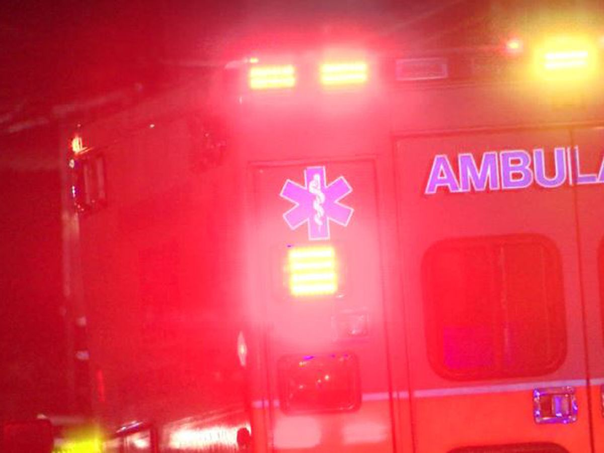 12-year-old boy attacked by six dogs in Winona