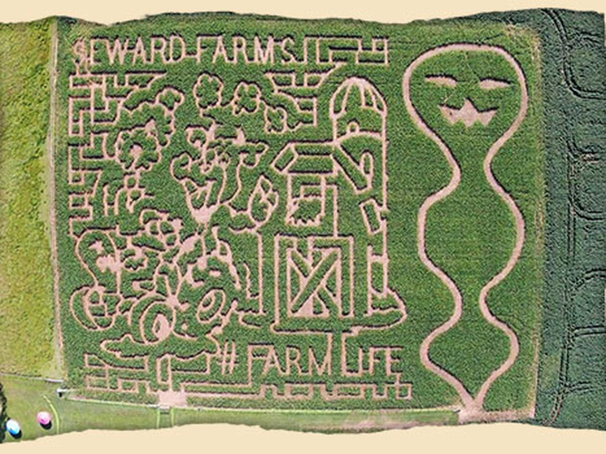 Seward Farms Corn Maze - Official Contest Rules