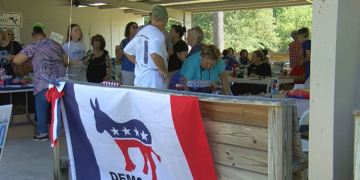 Democrats use Labor Day picnics to drum up support locally and statewide