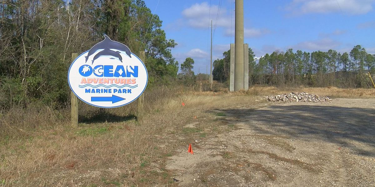 IMMS director concerned about potential nearby development