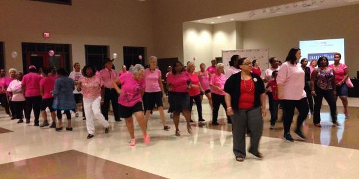 Pink Lotus Project hosts annual breast cancer fundraiser
