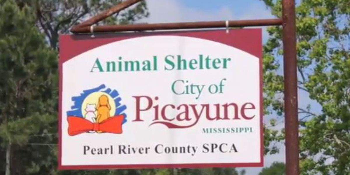 Pearl River Co. SPCA wins $10K
