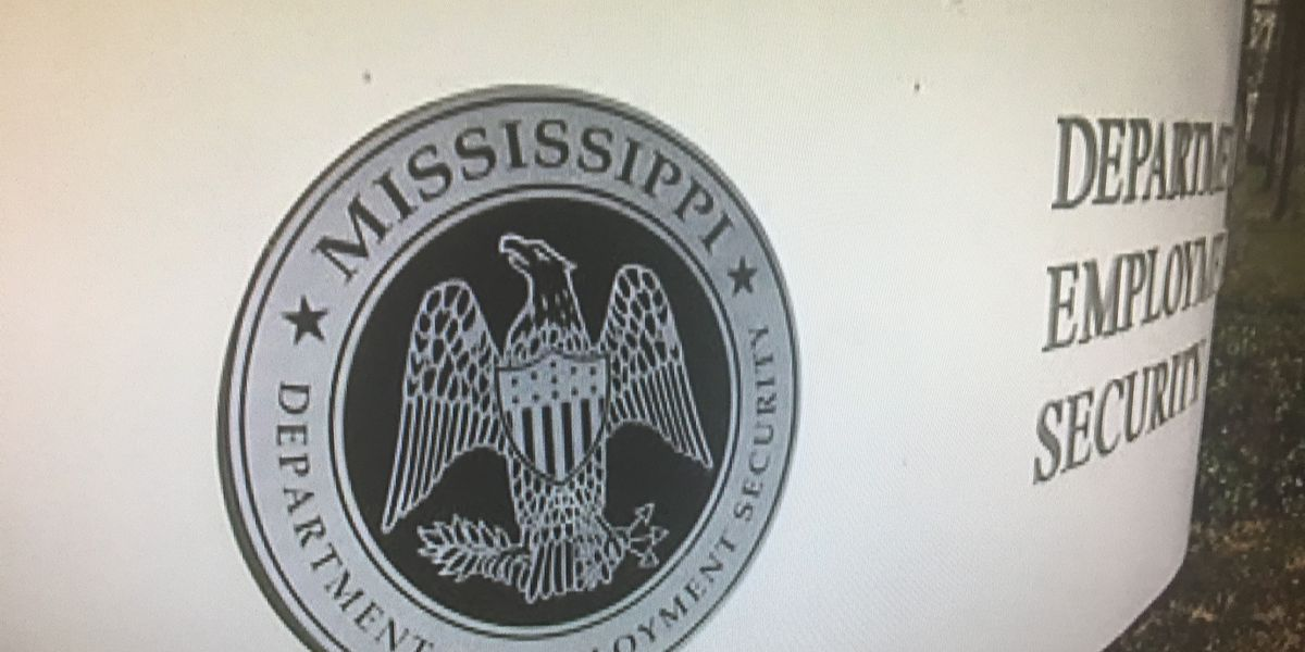 MS sets record for number of jobs
