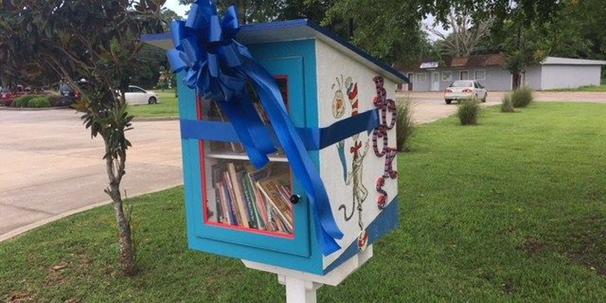 'Little Free Library' opens in Hurley