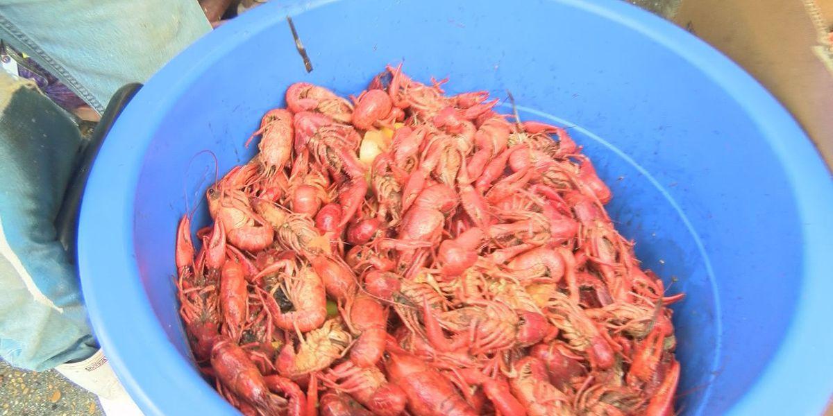 Coast residents take advantage of low crawfish prices