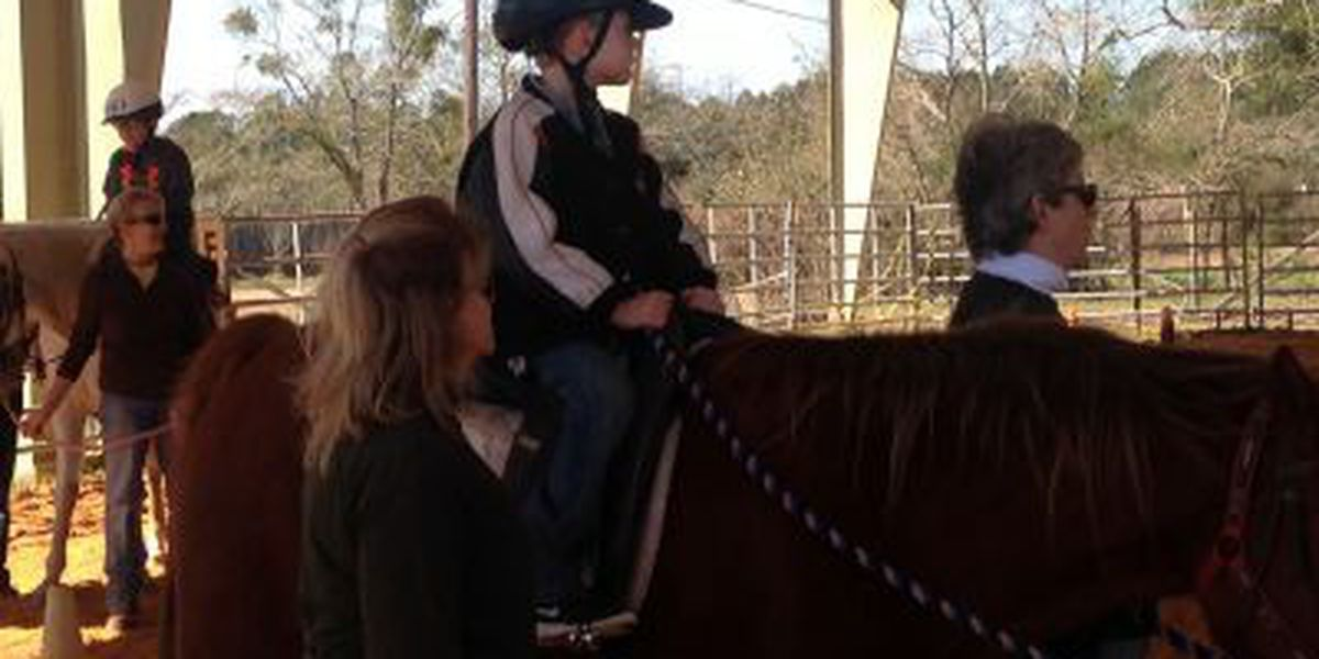 Gaits To Success impacts young lives