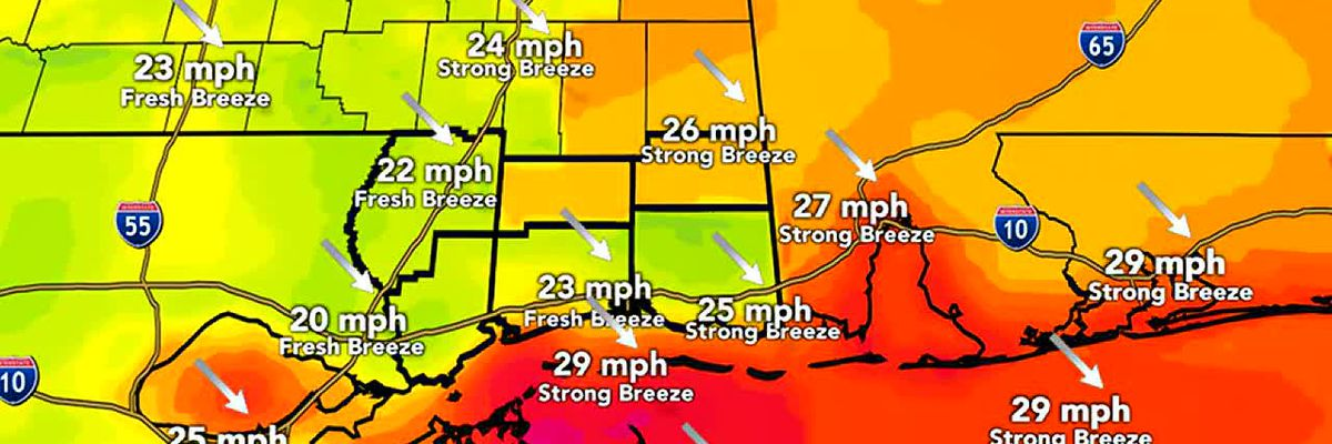FORECAST VIDEO: 2-26-20 Cooler and windy Wednesday