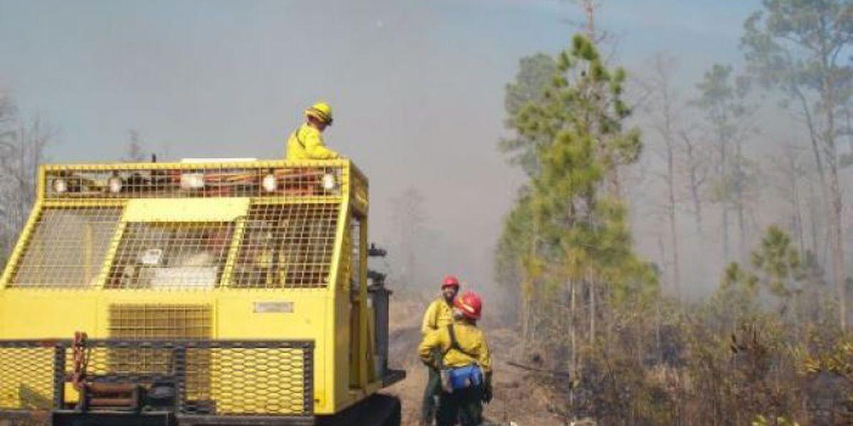 Part of Tuxachanie Trail to close for prescribed burn