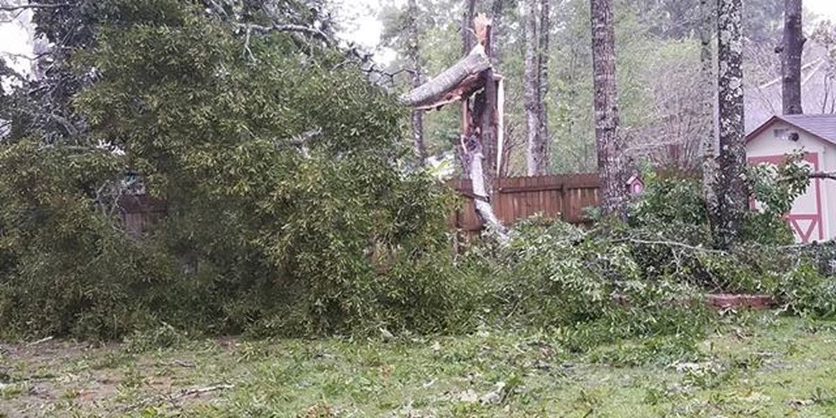 NWS confirms tornadoes in Jackson County