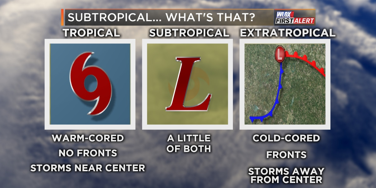 Subtropical or tropical... what's the difference?