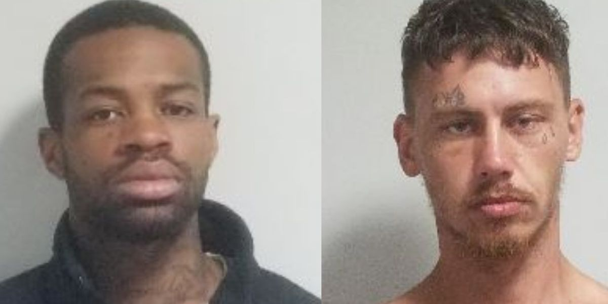 Two men arrested after stolen truck used to flee from police