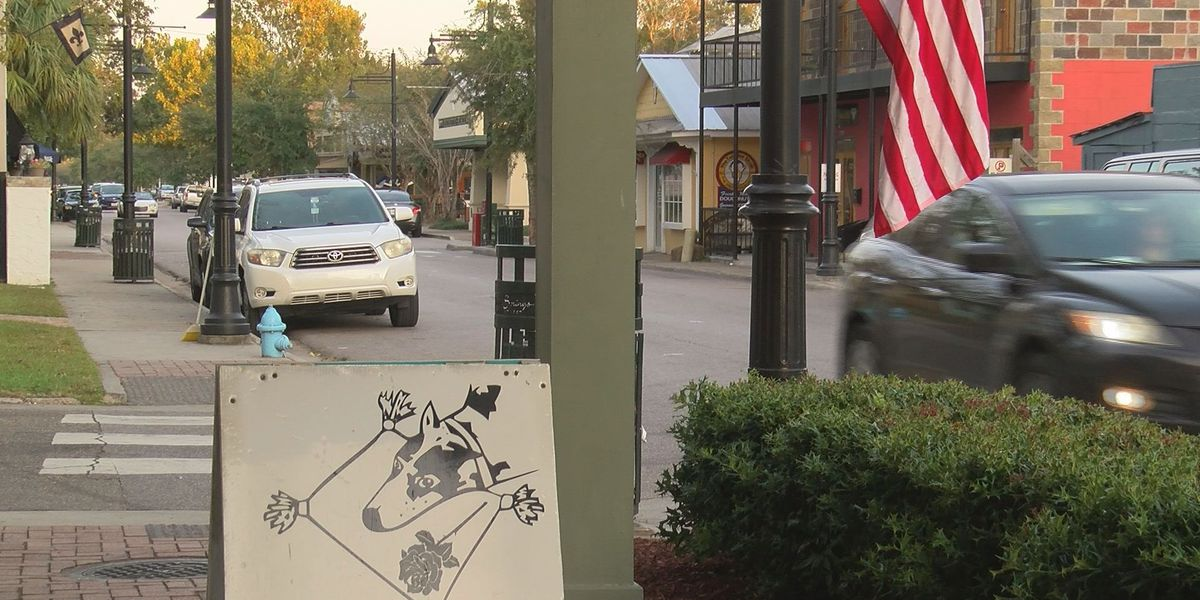 Ocean Springs business owners in favor of adding Mardi Gras parades