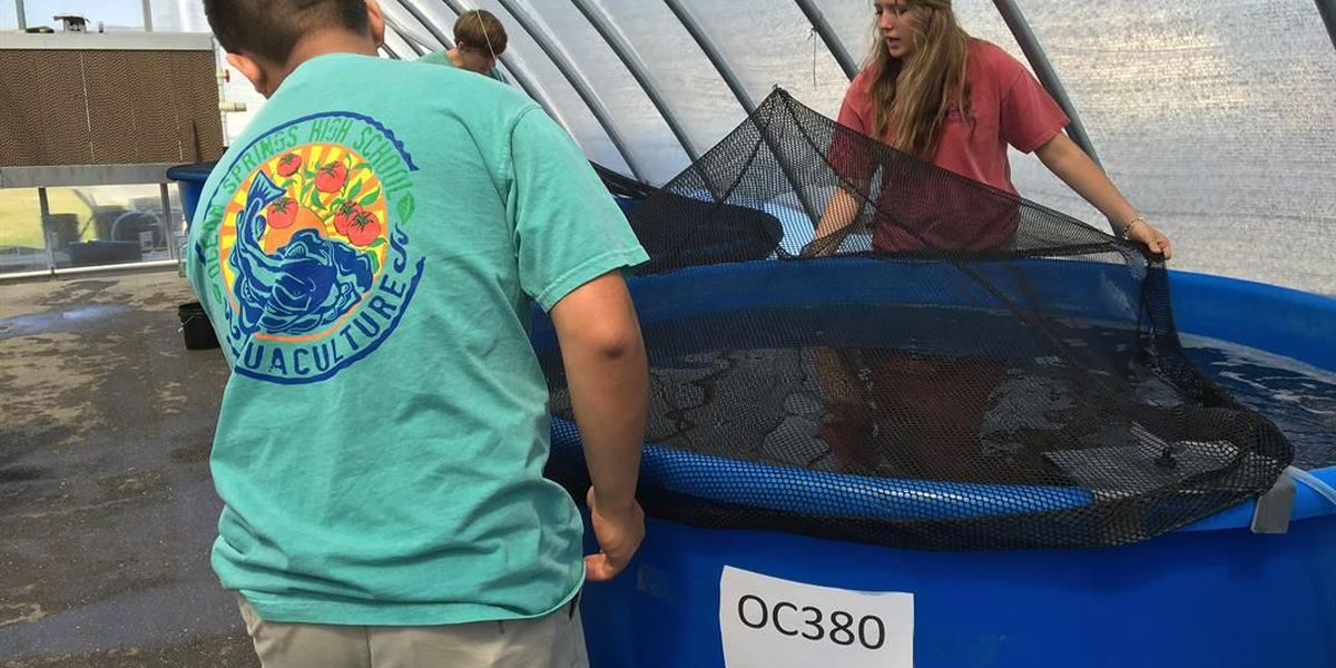 Ocean Springs High benefits from large fish donation