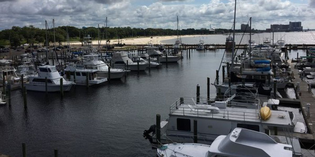 New brochure could reel in business for charter boat captains