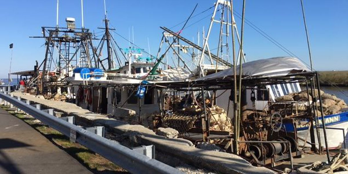 Fishermen disappointed with DMR oyster recovery program